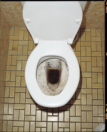 Swisstabs WC-Reinigungstabs