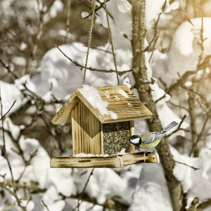 Vogelvoerhuis - Futtersilo