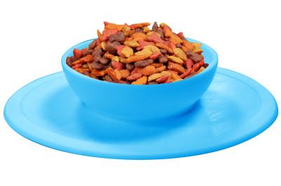 Pet Bowl - De perfecte siliconen voerbak voor uw huisdier