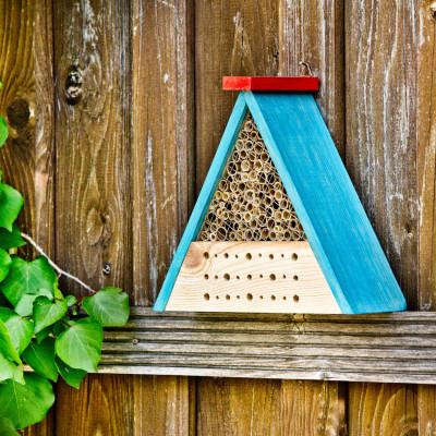 Insectenhotel bouwset inclusief penseel en verf