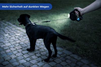 Hondenriem met LED-lampje en poepzakjes dispenser